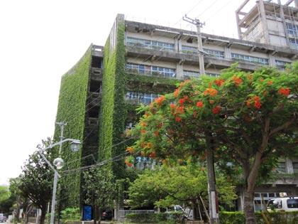 那覇市役所|コミュニティ道路側