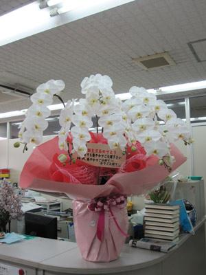 綾子誕生日プレゼント